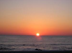 rising-sun-web